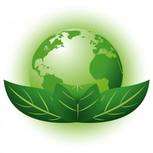 Environmental Policy - Green Planet